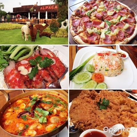 alpaca, thailand, theme restaurant, 主题餐厅, 泰国, 曼谷, bangkok