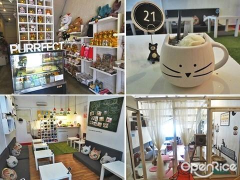 Purrfect Cat Cafe, 猫咪, 主题咖啡馆, 槟城