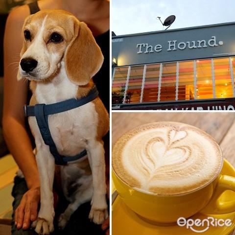 the hound, oug, pet cafe, 咖啡厅, beagle